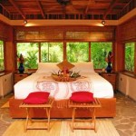 Red Palm Beachfront Bungalows